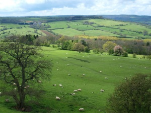 The-Cotswolds-Inggris